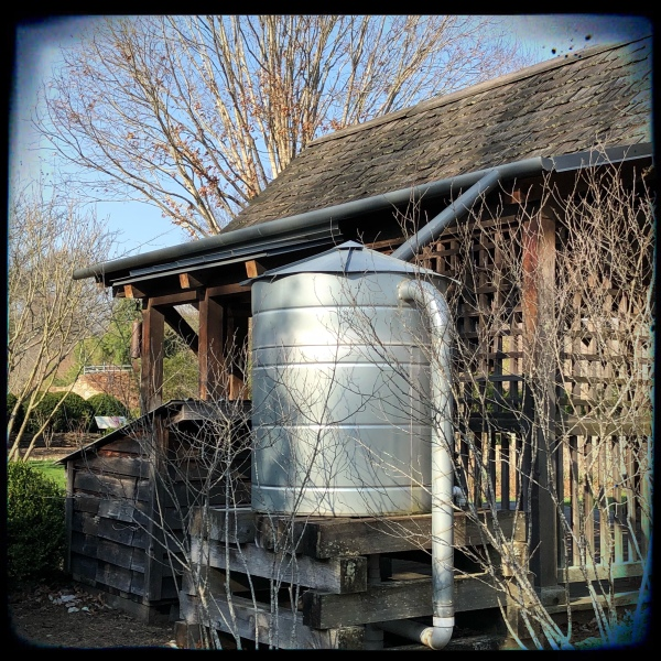 Silo-style water collection tank attached to gutters on a garden building